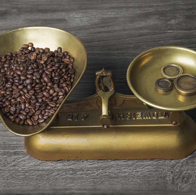 521 laure wardel et la promotion du cafe equitable