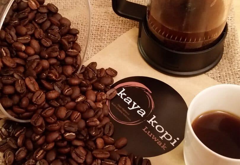 Kopi Luwak Coffee: What Makes It So Expensive?